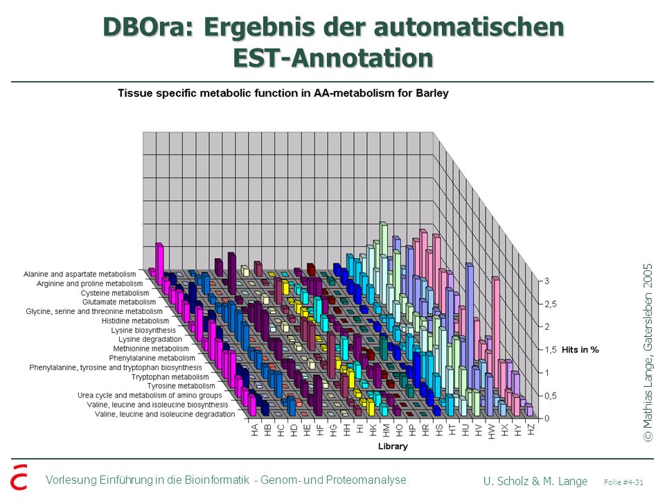 DBOra: Ergebnis der automatischen EST-Annotation
