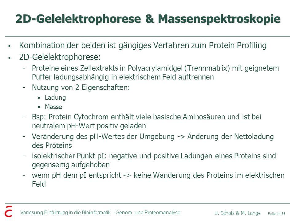2D-Gelelektrophorese & Massenspektroskopie
