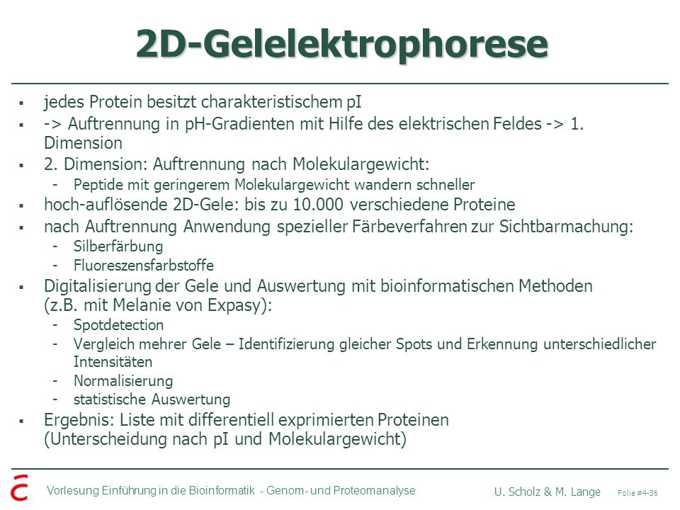 2D-Gelelektrophorese jedes Protein besitzt charakteristischem pI