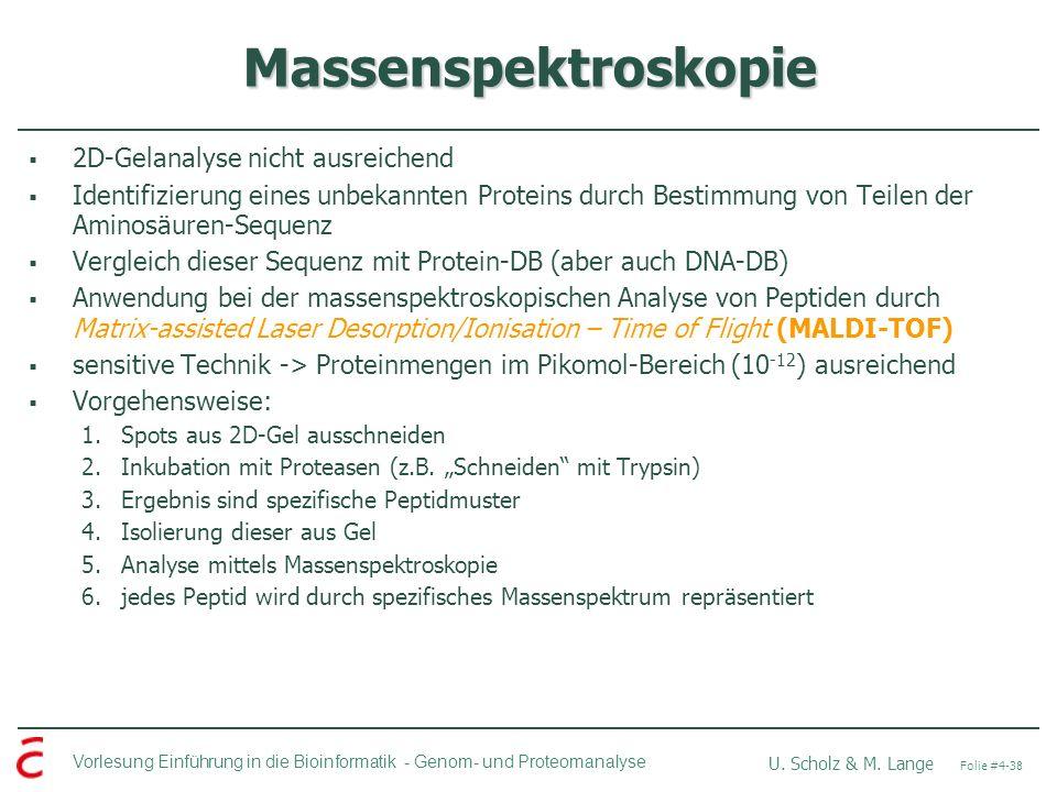 Massenspektroskopie 2D-Gelanalyse nicht ausreichend