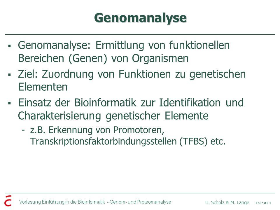 Genomanalyse Genomanalyse: Ermittlung von funktionellen Bereichen (Genen) von Organismen. Ziel: Zuordnung von Funktionen zu genetischen Elementen.
