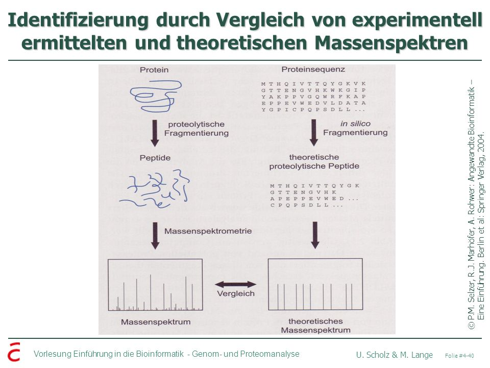 Identifizierung durch Vergleich von experimentell ermittelten und theoretischen Massenspektren