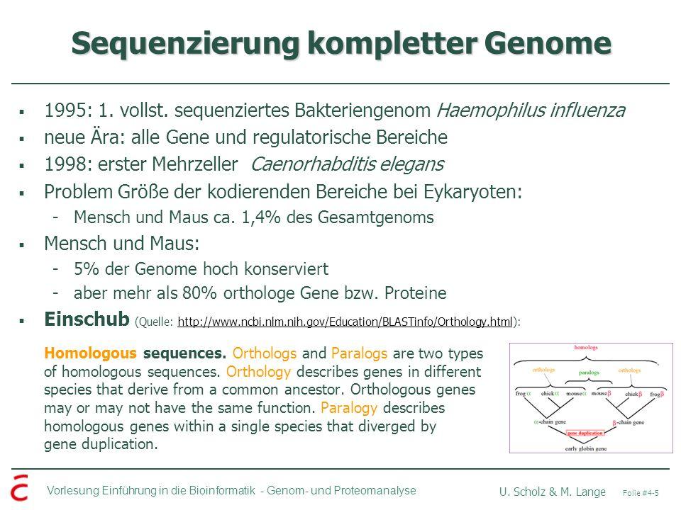 Sequenzierung kompletter Genome