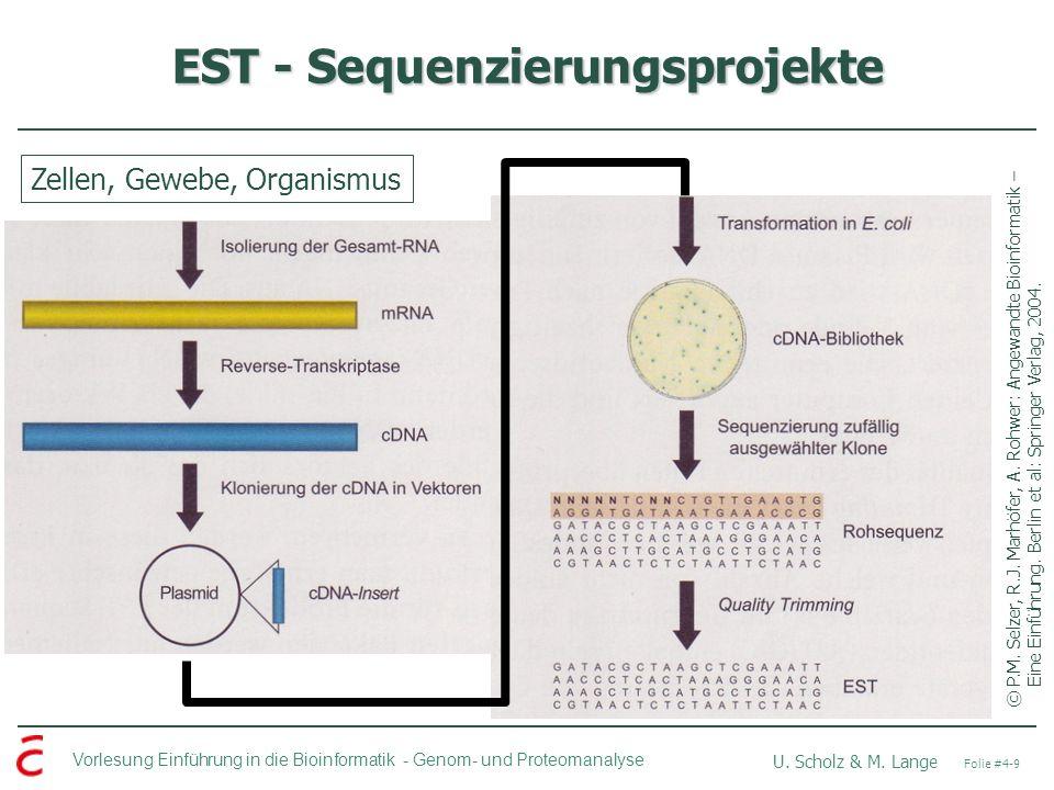 EST - Sequenzierungsprojekte
