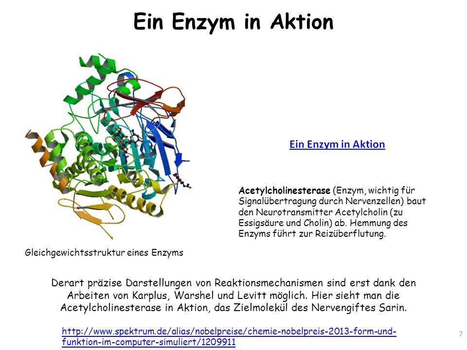 Ein Enzym in Aktion Ein Enzym in Aktion