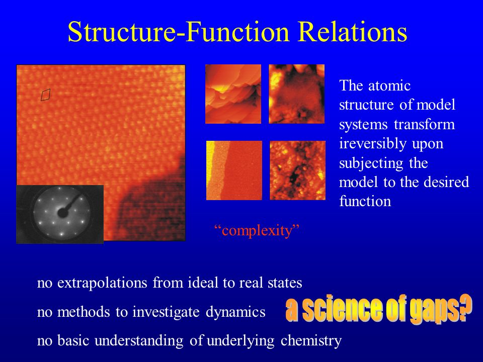Structure-Function Relations
