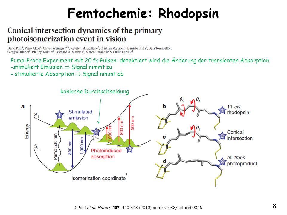 Femtochemie: Rhodopsin