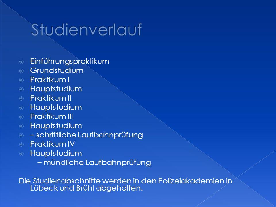 Studienverlauf Einführungspraktikum Grundstudium Praktikum I
