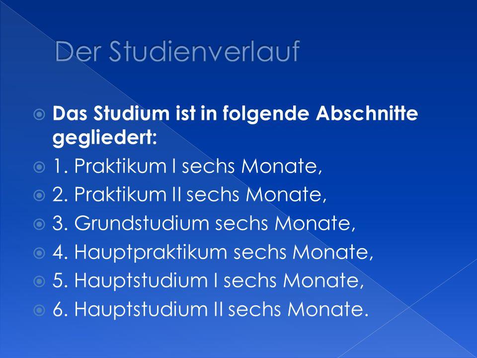 Der Studienverlauf Das Studium ist in folgende Abschnitte gegliedert: