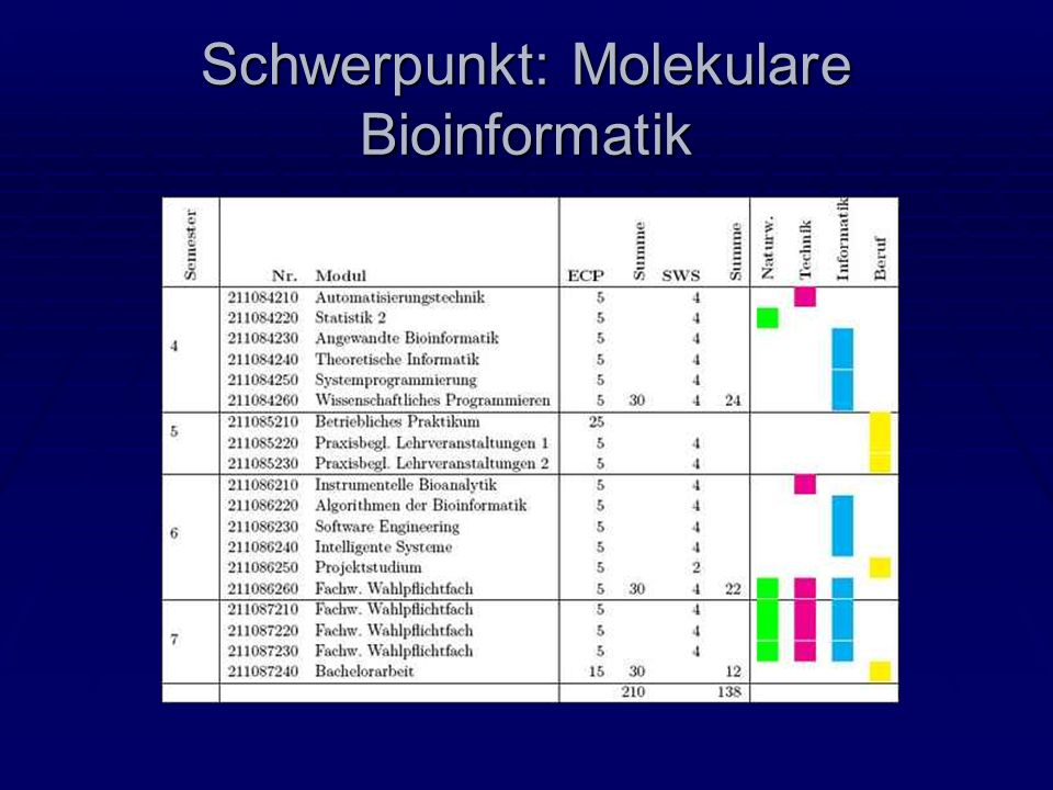 Schwerpunkt: Molekulare Bioinformatik