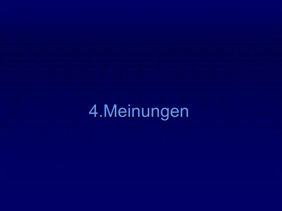 4.Meinungen