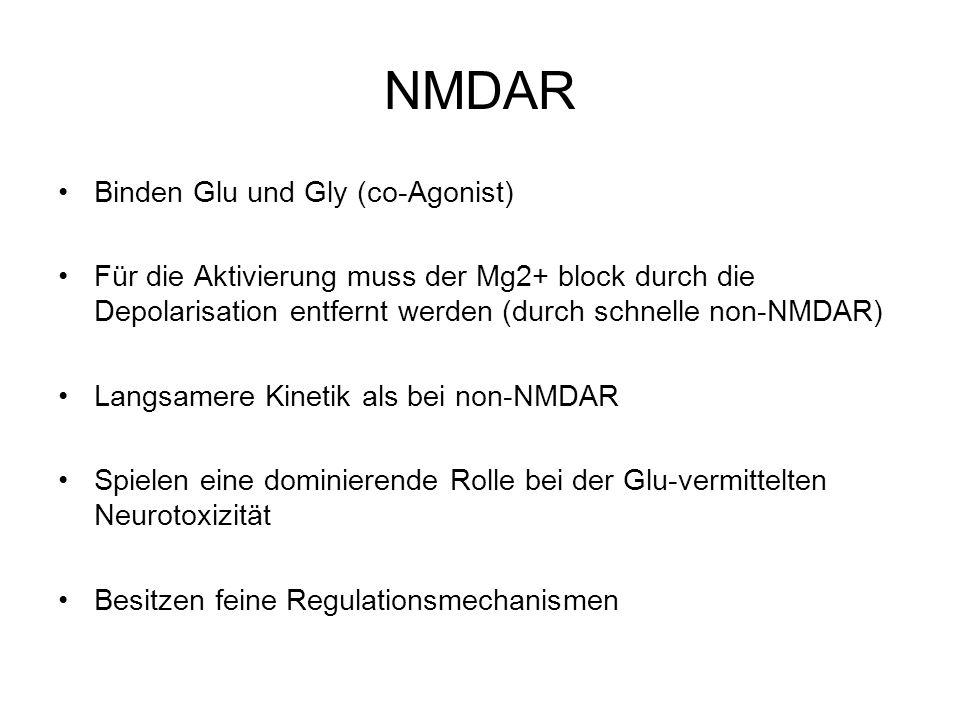 NMDAR Binden Glu und Gly (co-Agonist)