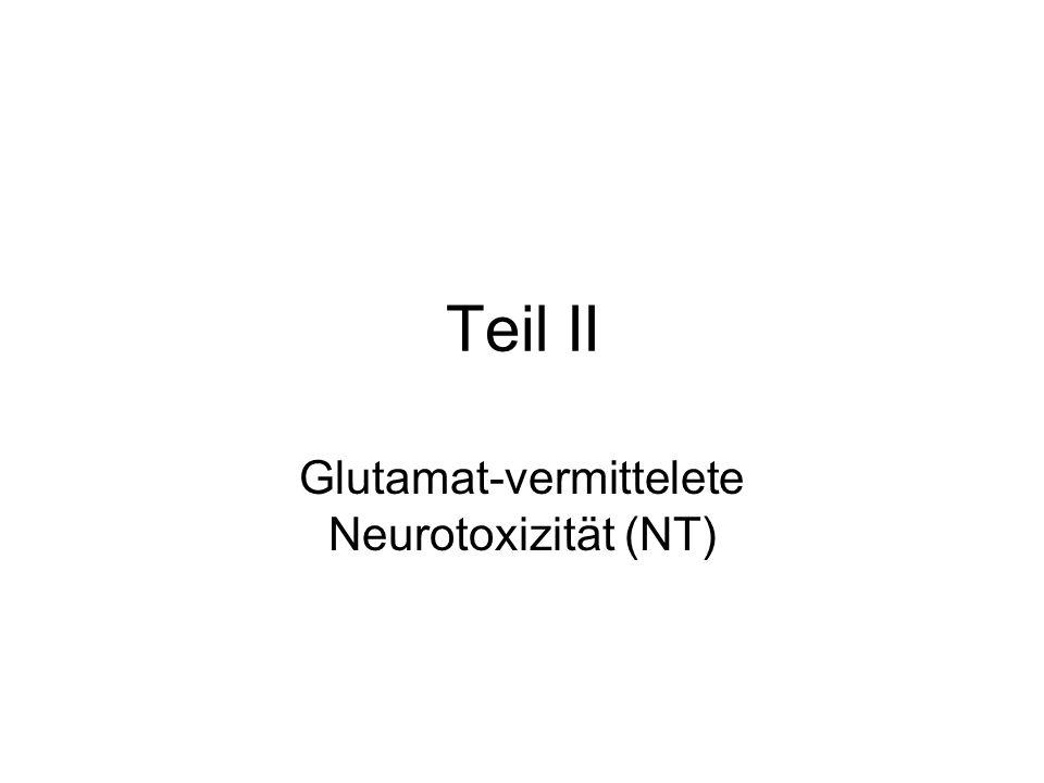 Glutamat-vermittelete Neurotoxizität (NT)