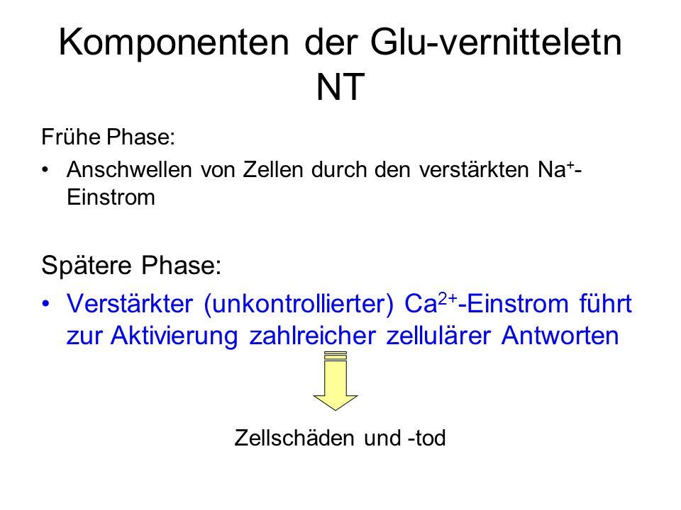 Komponenten der Glu-vernitteletn NT
