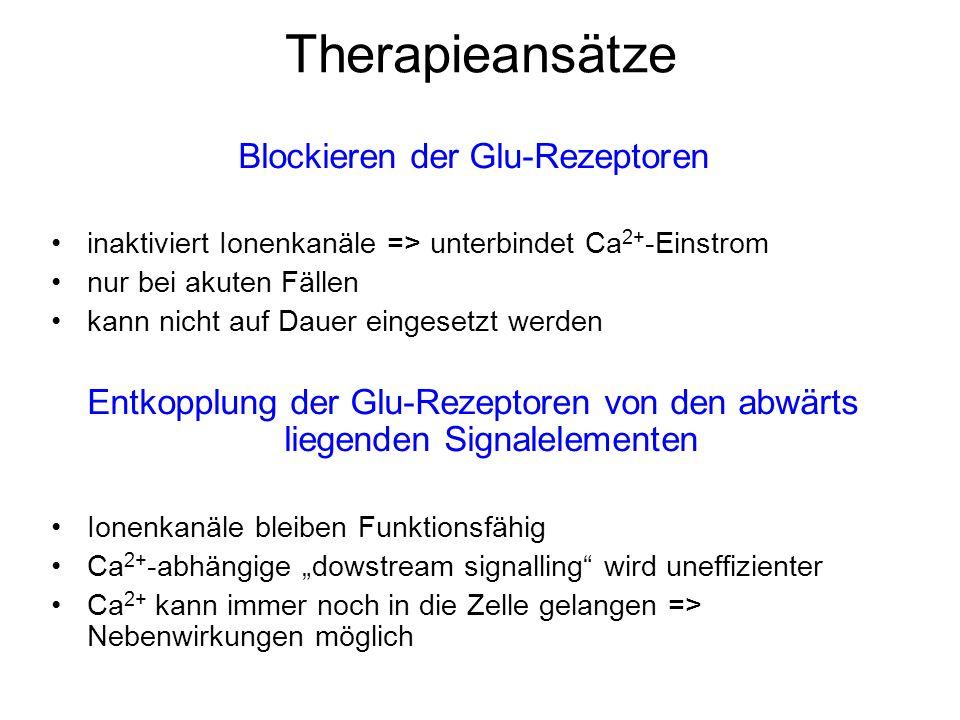 Blockieren der Glu-Rezeptoren