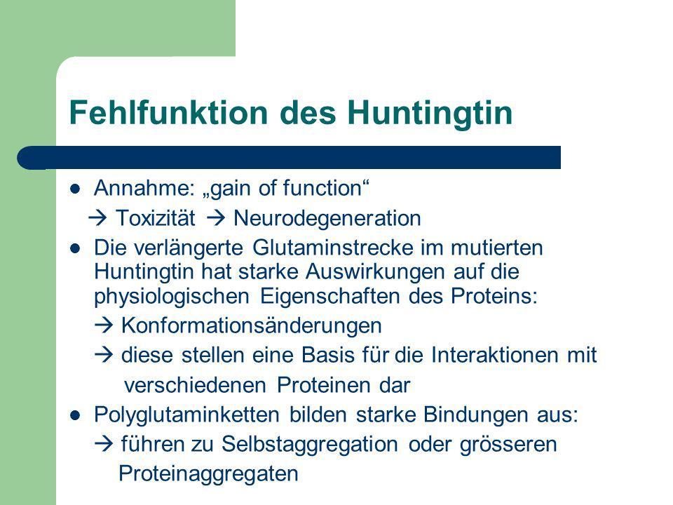 Fehlfunktion des Huntingtin