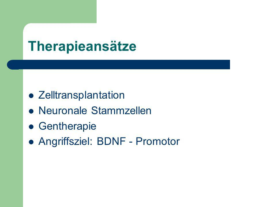 Therapieansätze Zelltransplantation Neuronale Stammzellen Gentherapie