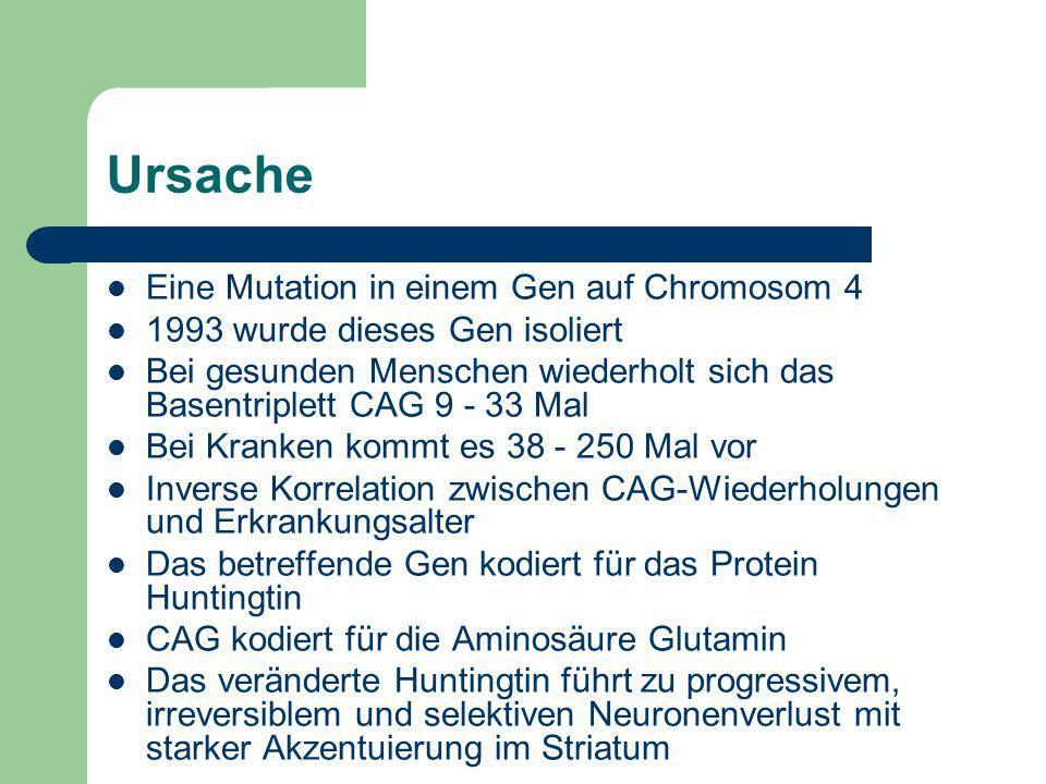 Ursache Eine Mutation in einem Gen auf Chromosom 4