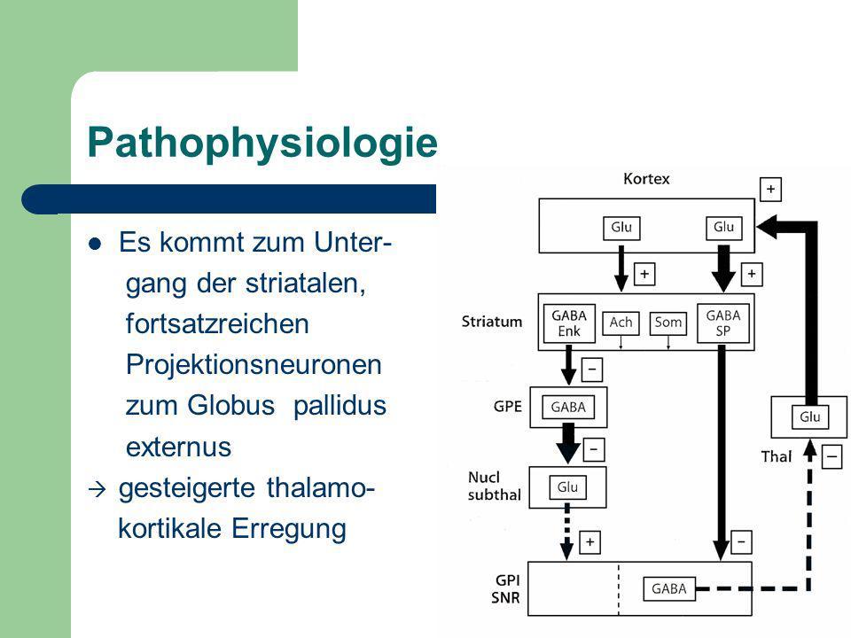 Pathophysiologie Es kommt zum Unter- gang der striatalen,