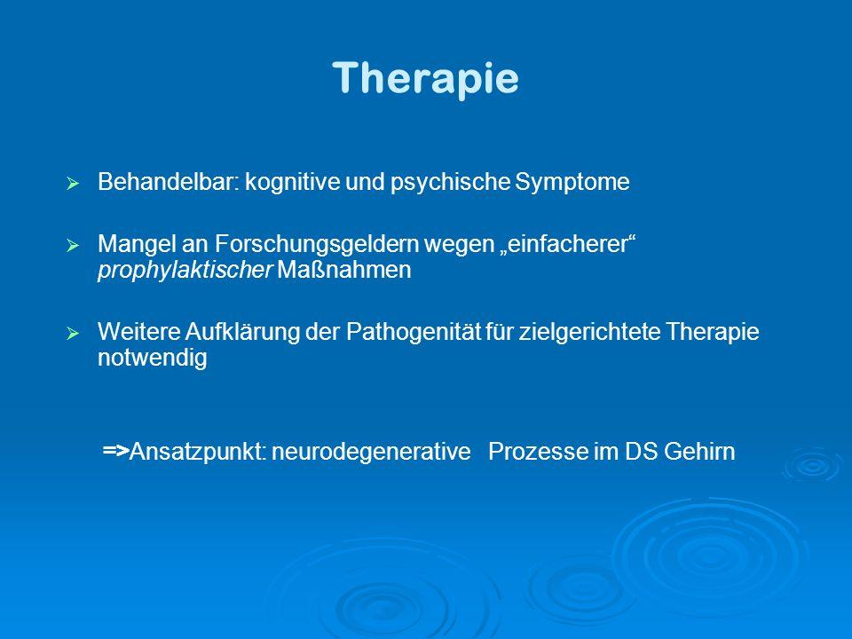 =>Ansatzpunkt: neurodegenerative Prozesse im DS Gehirn