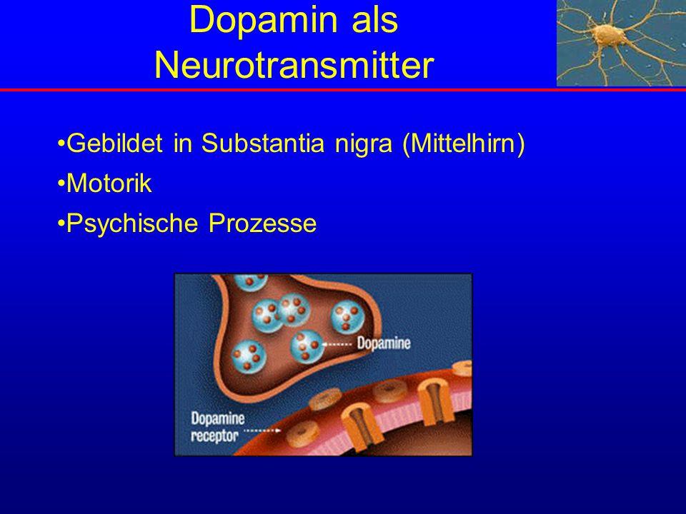 Dopamin als Neurotransmitter