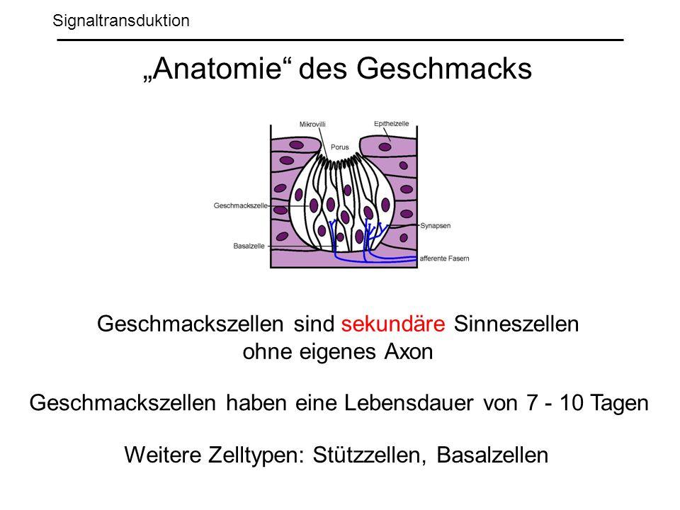 """""""Anatomie des Geschmacks"""
