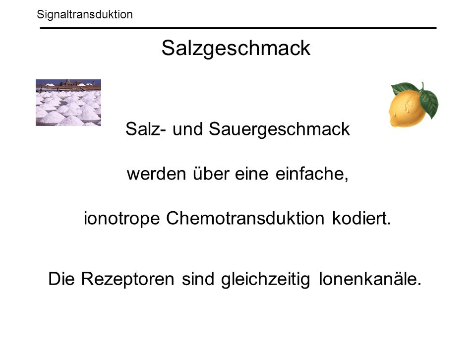 Salzgeschmack Salz- und Sauergeschmack werden über eine einfache,
