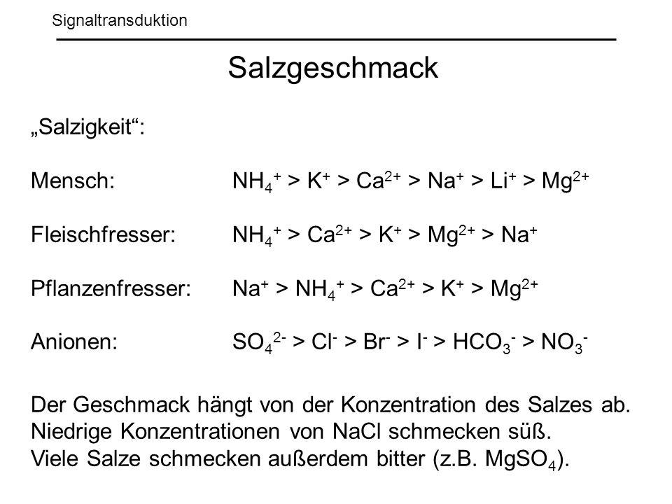 """Salzgeschmack """"Salzigkeit :"""