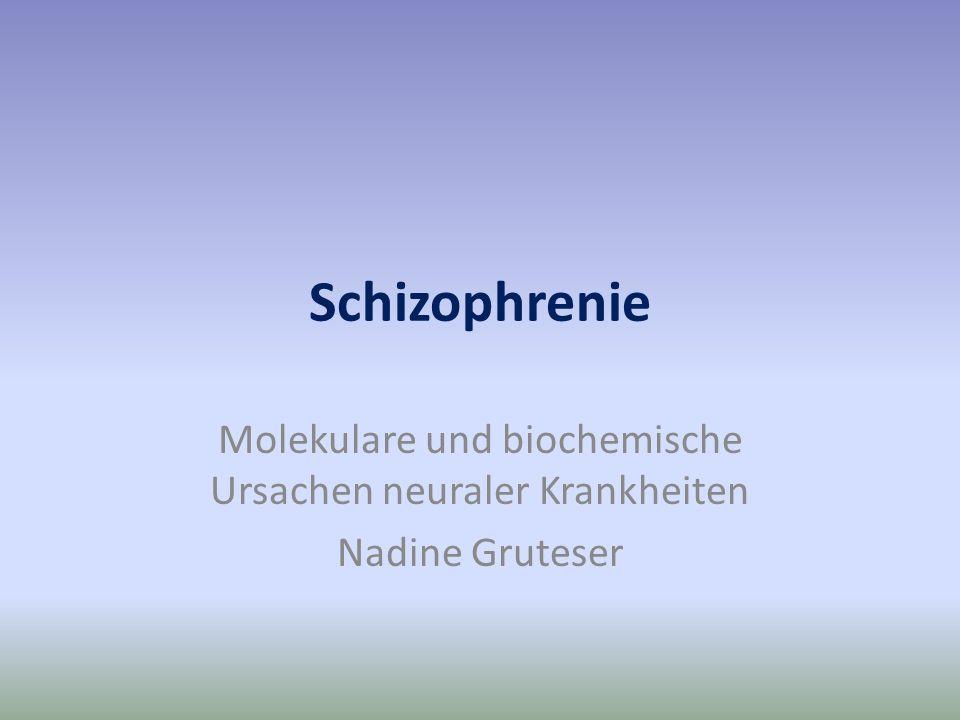 Molekulare und biochemische Ursachen neuraler Krankheiten