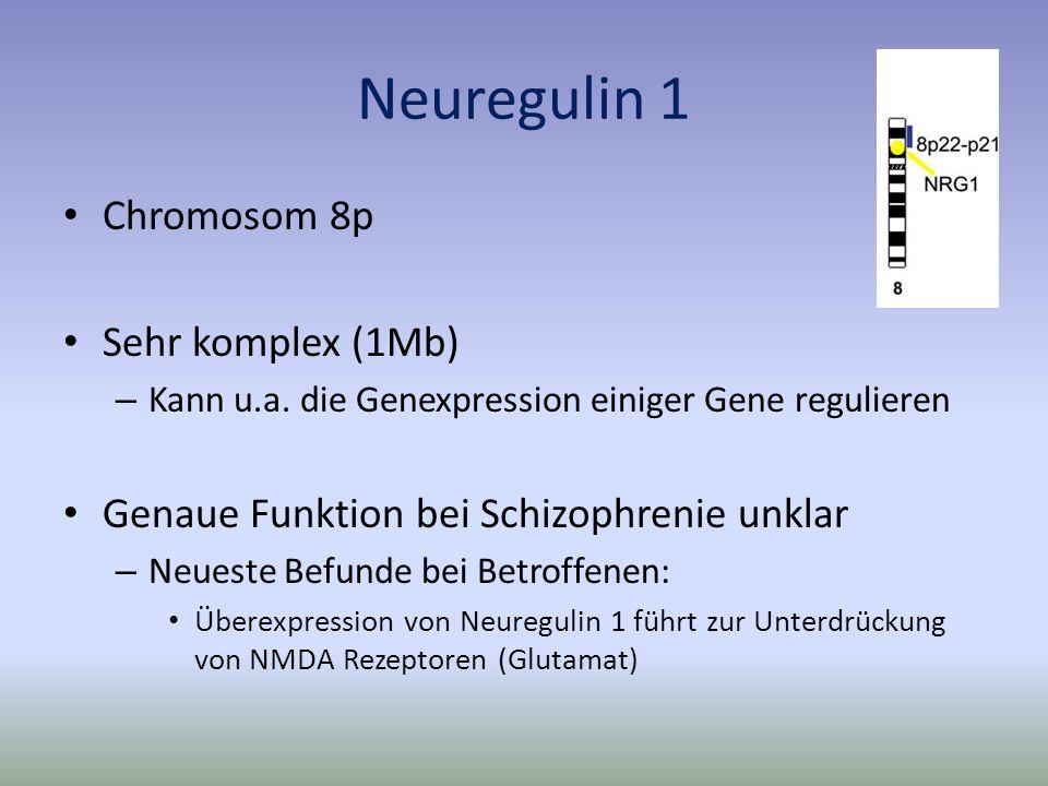 Neuregulin 1 Chromosom 8p Sehr komplex (1Mb)