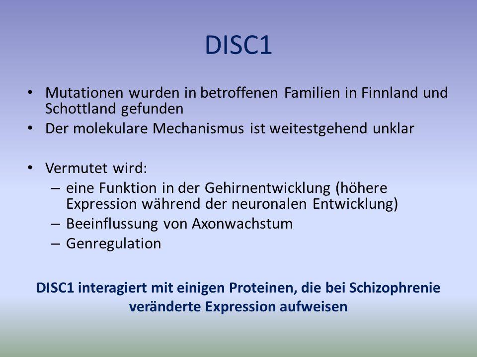 DISC1 Mutationen wurden in betroffenen Familien in Finnland und Schottland gefunden. Der molekulare Mechanismus ist weitestgehend unklar.