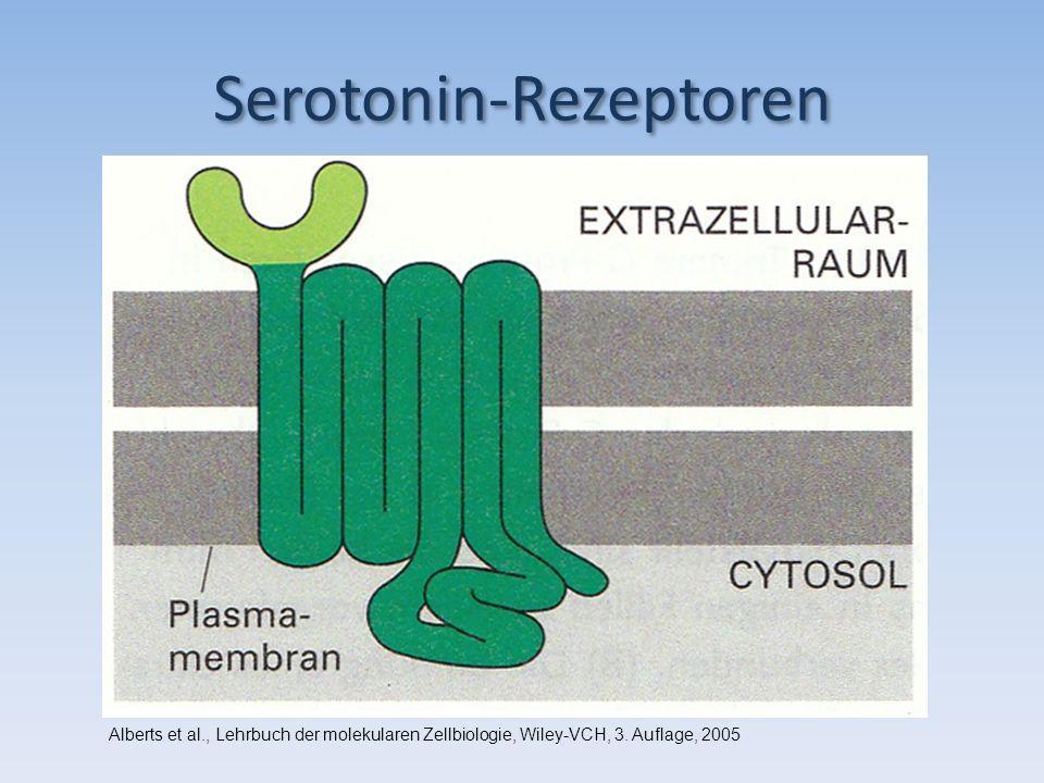 Serotonin-Rezeptoren
