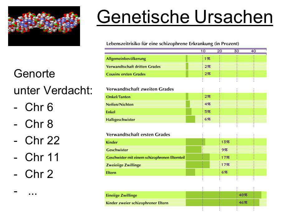 Genetische Ursachen Genorte unter Verdacht: Chr 6 Chr 8 Chr 22 Chr 11