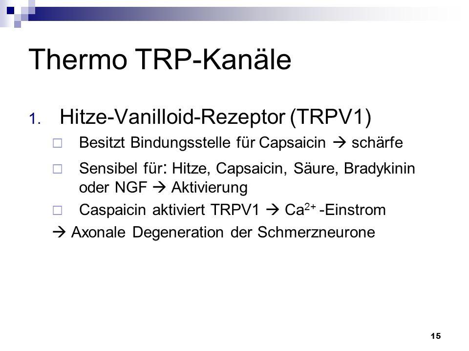 Thermo TRP-Kanäle Hitze-Vanilloid-Rezeptor (TRPV1)