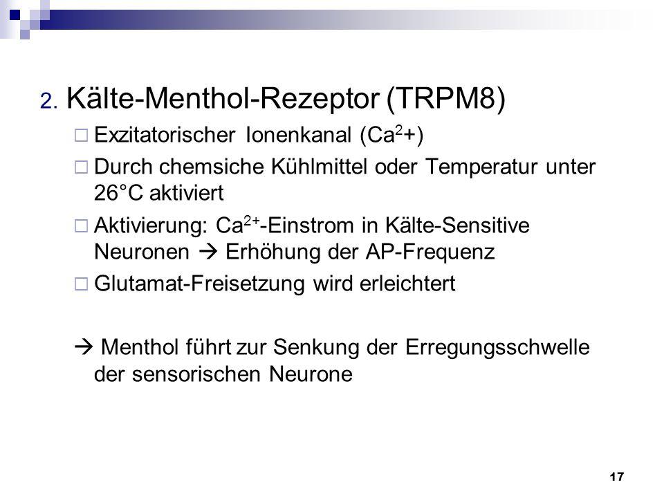 2. Kälte-Menthol-Rezeptor (TRPM8)