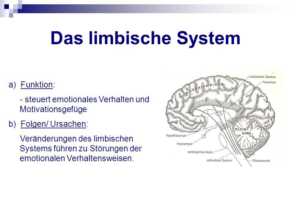 Das limbische System a) Funktion: