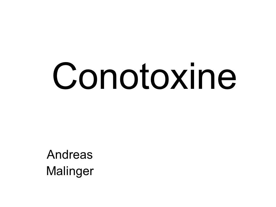 Conotoxine Andreas Malinger