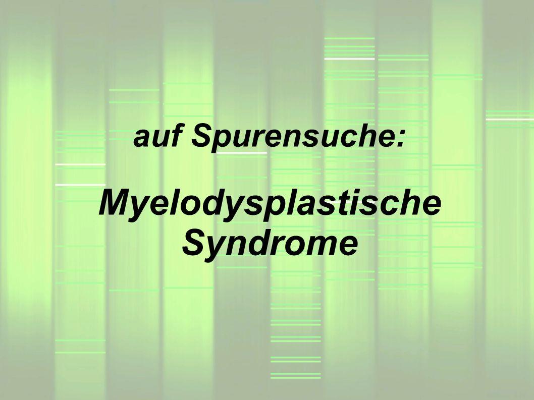 auf Spurensuche: Myelodysplastische Syndrome