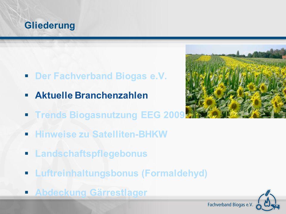 Gliederung Der Fachverband Biogas e.V. Aktuelle Branchenzahlen. Trends Biogasnutzung EEG 2009. Hinweise zu Satelliten-BHKW.