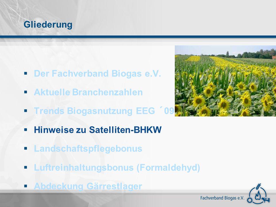Gliederung Der Fachverband Biogas e.V. Aktuelle Branchenzahlen. Trends Biogasnutzung EEG ´09. Hinweise zu Satelliten-BHKW.