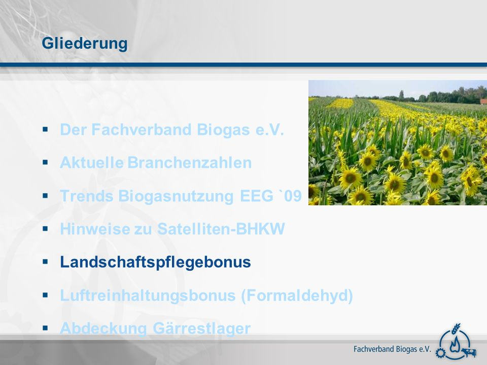 Gliederung Der Fachverband Biogas e.V. Aktuelle Branchenzahlen. Trends Biogasnutzung EEG `09. Hinweise zu Satelliten-BHKW.
