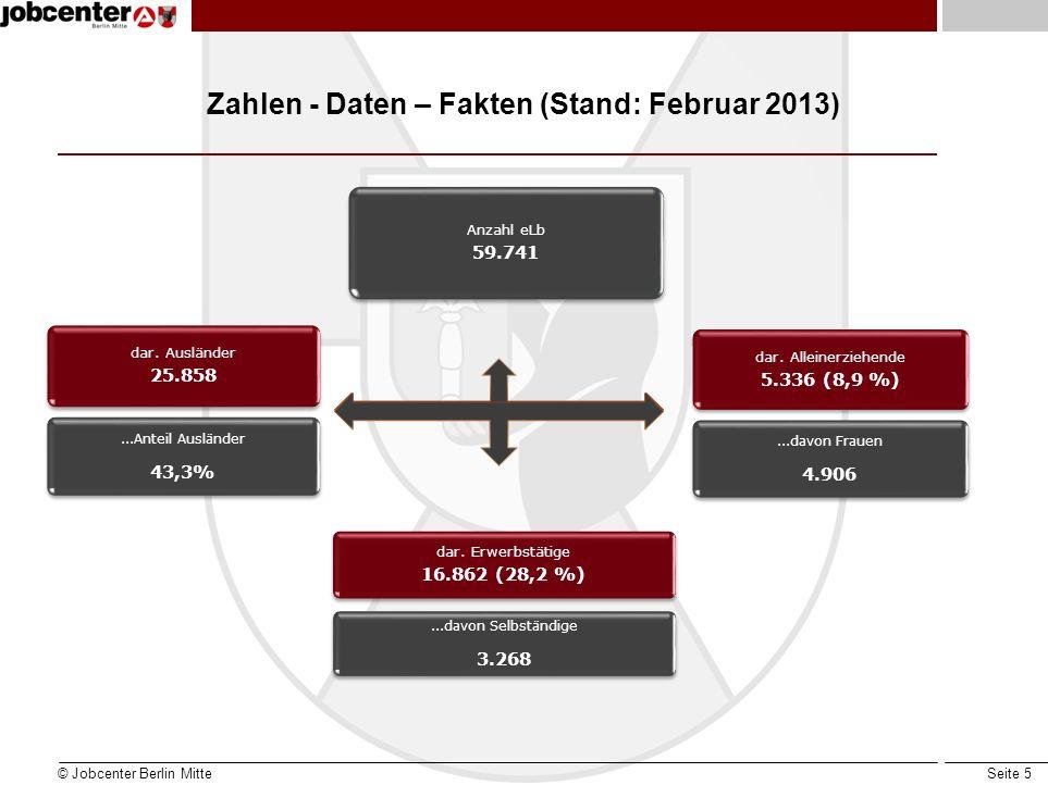 Zahlen - Daten – Fakten (Stand: Februar 2013)