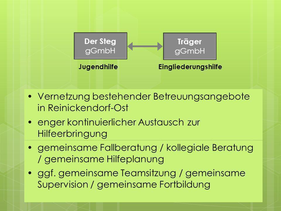 Vernetzung bestehender Betreuungsangebote in Reinickendorf-Ost
