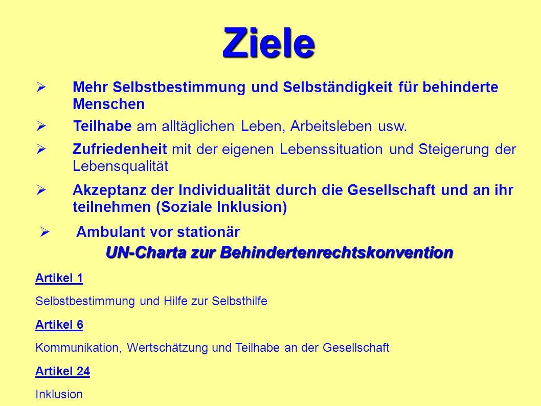 UN-Charta zur Behindertenrechtskonvention