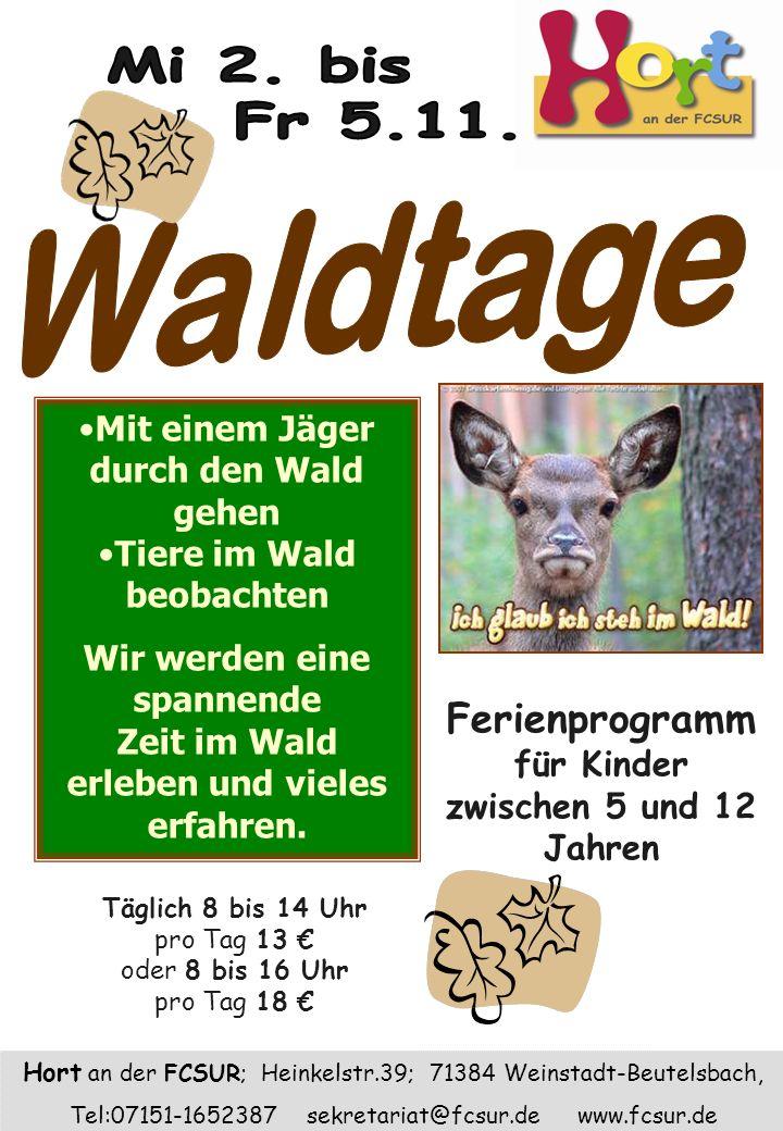 Mi 2. bis Fr 5.11. Waldtage. Mit einem Jäger durch den Wald gehen. Tiere im Wald beobachten. Wir werden eine spannende.