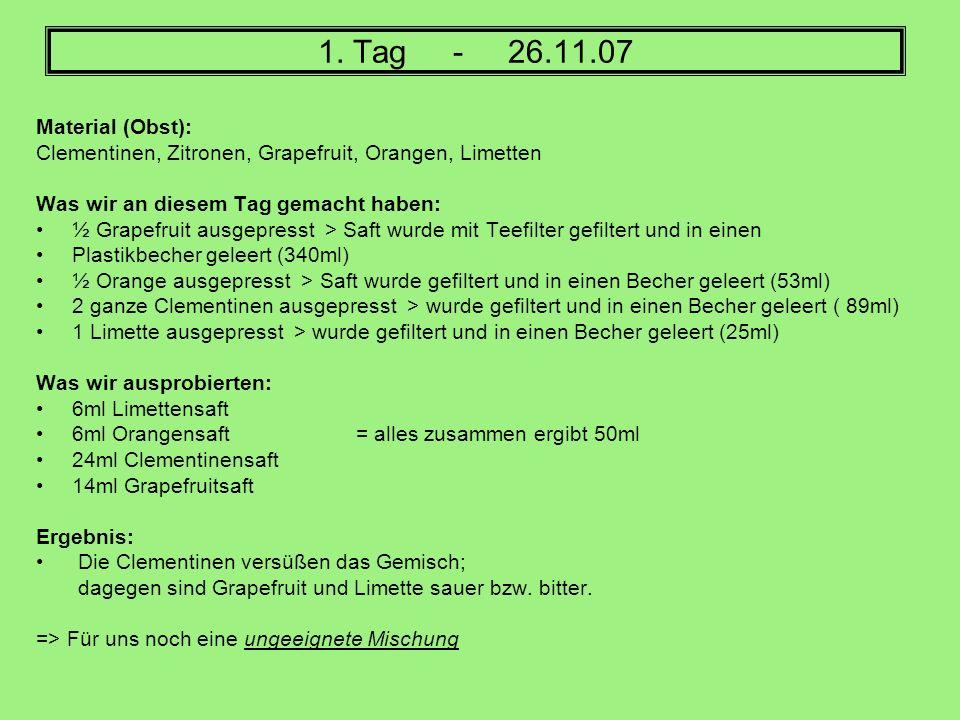 1. Tag - 26.11.07Material (Obst): Clementinen, Zitronen, Grapefruit, Orangen, Limetten. Was wir an diesem Tag gemacht haben: