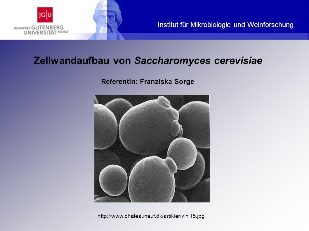 Institut für Mikrobiologie und Weinforschung