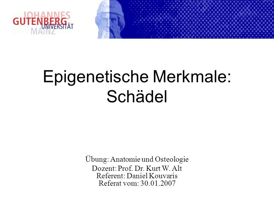 Epigenetische Merkmale: Schädel