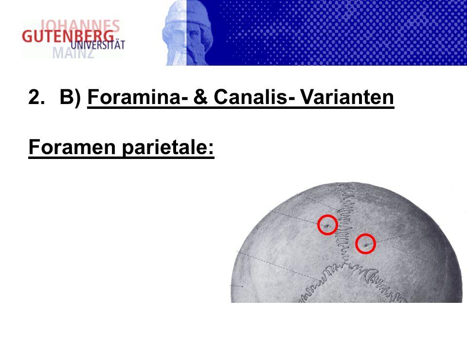 B) Foramina- & Canalis- Varianten