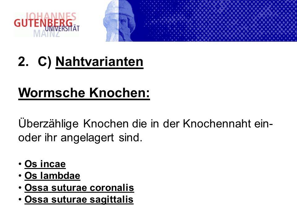 C) Nahtvarianten Wormsche Knochen: